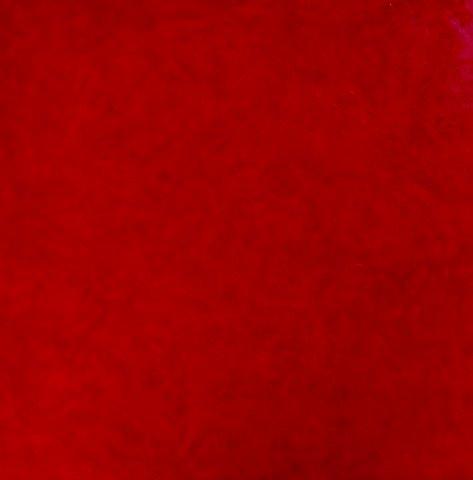 Simply  Red.  Olieverf Op Doek 40 / 40 Cm.  € 170.--